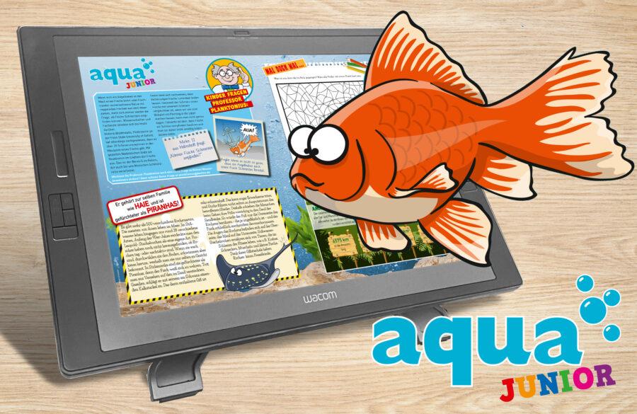 Aqua junior