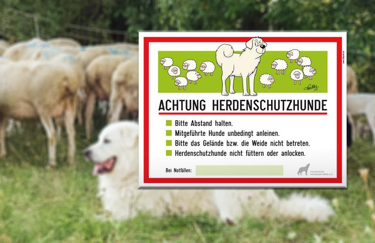 Herdenschutzschild